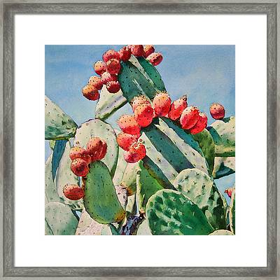 Cactus Apples Framed Print