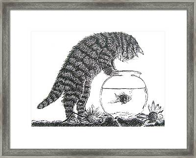 Cat And Fishbowl Framed Print
