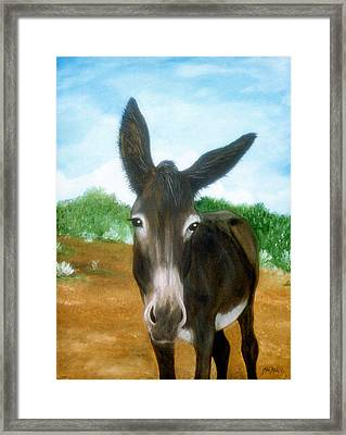 Framed Print featuring the painting Chimayo Mule by Jan Amiss