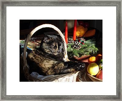 Christmas Cat Basket Framed Print
