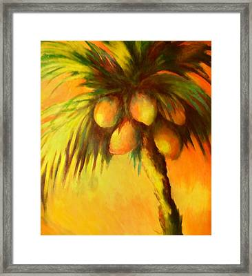 Coconuts At Sunrise Framed Print by Joann Shular