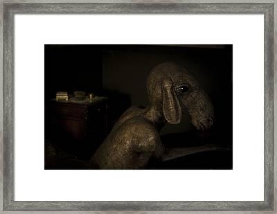 Diego Framed Print by Francesca Dalla benetta