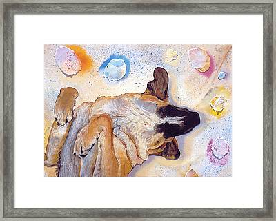 Dog Dreams Framed Print by Pat Saunders-White