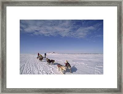 Dog Sled Crosses Frozen Lake Framed Print