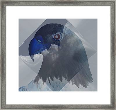 Dreaming In Eagle Vision Framed Print
