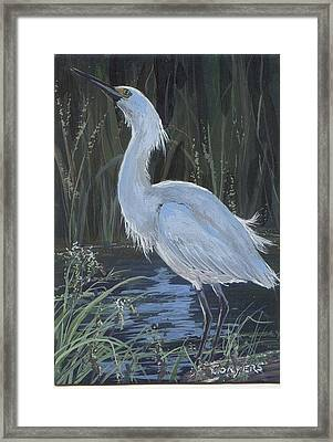 Egret Framed Print by Peggy Conyers