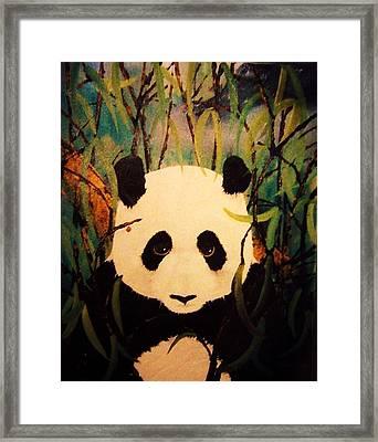 Endangered Panda Framed Print