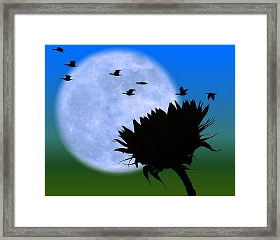 Endings . . . . . Framed Print
