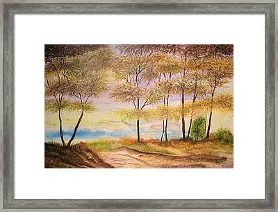 Falling Leaves Framed Print
