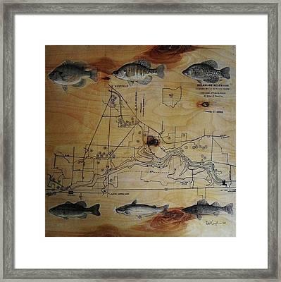 Fish Map Framed Print by Robert Cunningham
