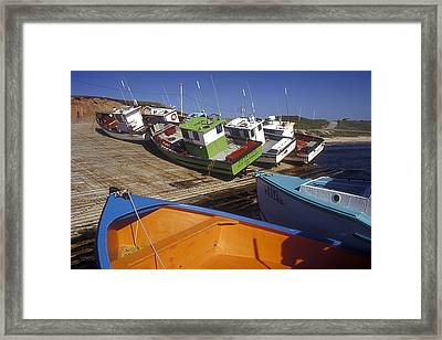 Fishing Boats - Magdalen Islands Framed Print by Carol Barrington