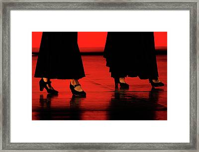 Framed Print featuring the photograph Flamenco 2 by Pedro Cardona