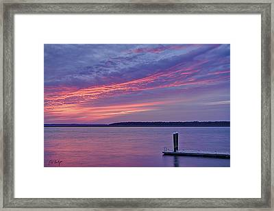 Floating Dock Framed Print by Phill Doherty
