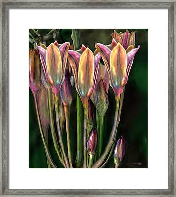 Flowers Framed Print by Virginia Palomeque