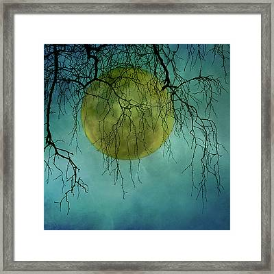 Full Moon Framed Print by Jill Ferry