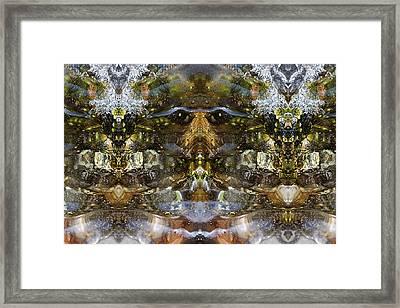 Ganesh Framed Print by Shawn Young