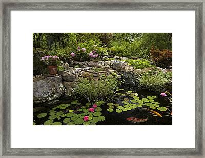 Garden Pond - D001133 Framed Print by Daniel Dempster