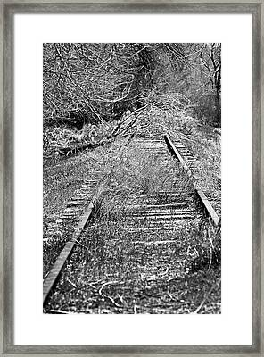 Framed Print featuring the photograph Ghost Rail by Juls Adams