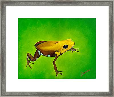 Golden Frog Of Supata Framed Print by Sabina Espinet