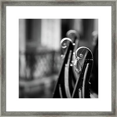 Framed Print featuring the photograph Gondolas by Stefan Nielsen