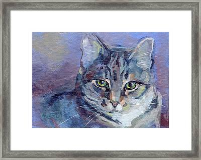 Green Eyed Tabby - Thomasina Framed Print by Kimberly Santini