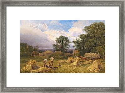 Harvest Time Framed Print by GV Cole