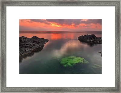 Hidden Green Framed Print by Evgeni Dinev