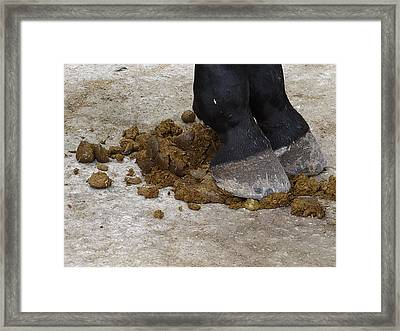 Horse Manure Framed Print by Bruce Ritchie