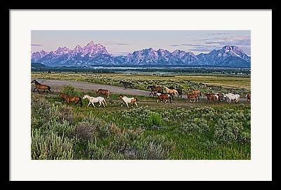 Distant Mountains Framed Prints