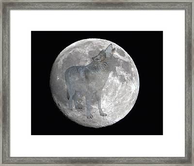 Howl At The Moon Framed Print