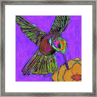 Hummingbird On Purple Framed Print