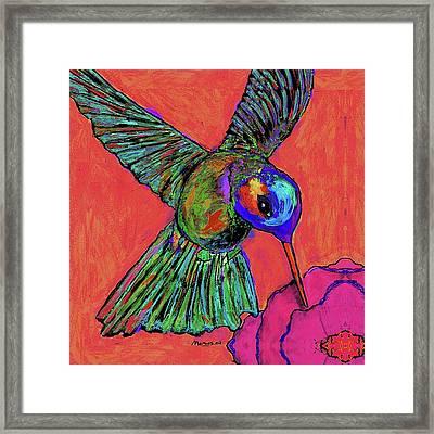 Hummingbird On Red Framed Print
