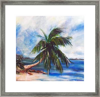 Island Iv Framed Print by Amy Williams