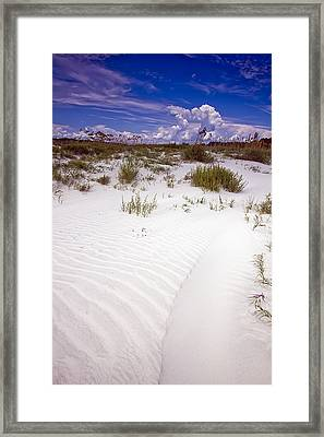 Kiawah Island Beachwalker Framed Print by Dustin K Ryan