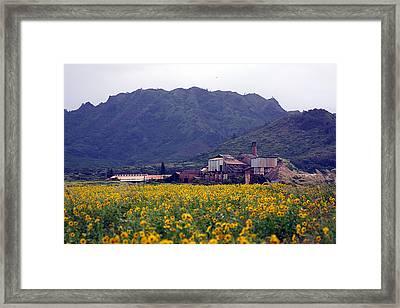 Koloa Sugar Mill Framed Print