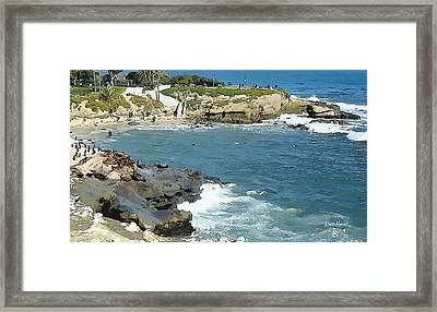 La Jolla Cove - Early Morning Swim Framed Print by Russ Harris