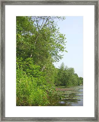 Lake Of Isles Framed Print by Heather Weikel