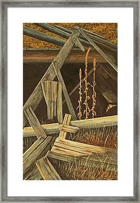 Last Tenants Framed Print by Laurie Stewart