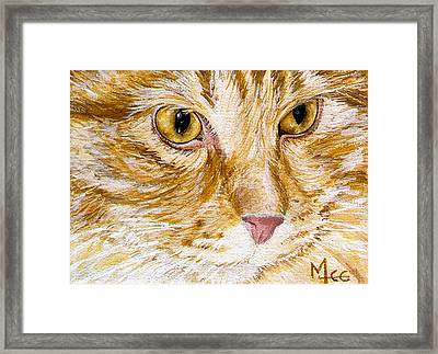 Leo Framed Print by Mary-Lee Sanders
