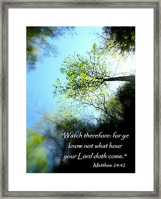 Look Up Matthew 24 Framed Print by Cindy Wright