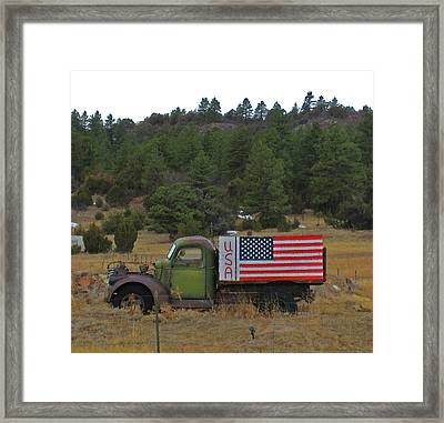 Love Usa Framed Print