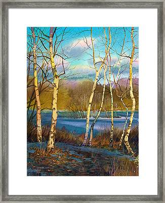 March. Birches Framed Print