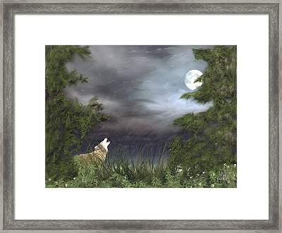 Midnight Blue Framed Print by Barb Kirpluk