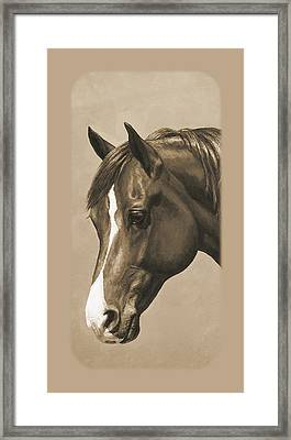 Morgan Horse Phone Case In Sepia Framed Print