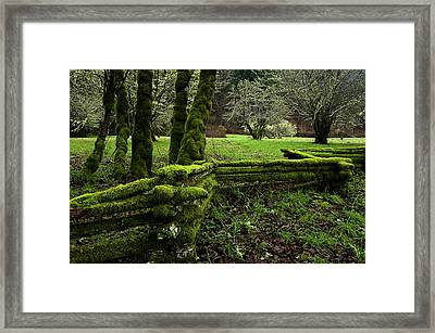 Mossy Fence 2 Framed Print by Bob Christopher