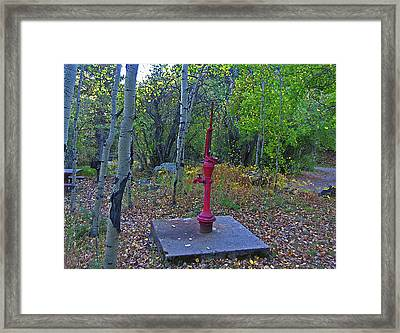 Framed Print featuring the photograph Mountain Water by Tammy Sutherland
