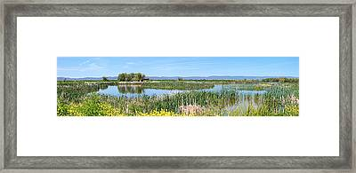 National Wildlife Preserve Marshes In Klamath Falls Oregon. Framed Print by Gino Rigucci