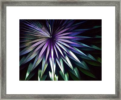 Night Bloom Framed Print by Photo ephemera