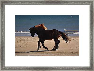 No Boundaries Framed Print by Jeff Moose