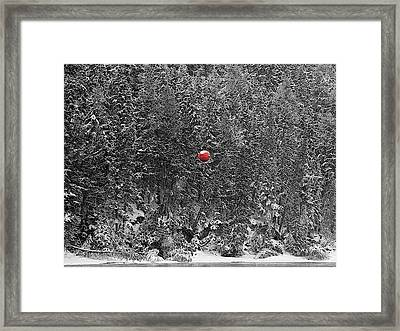 Framed Print featuring the photograph Orb by Stuart Turnbull